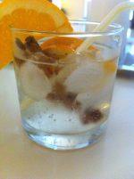 Autumn Gin Tonic
