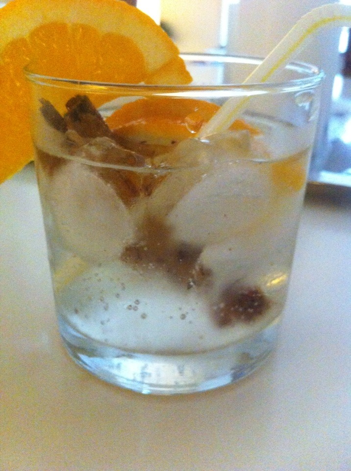 Autumn Gin Tonic